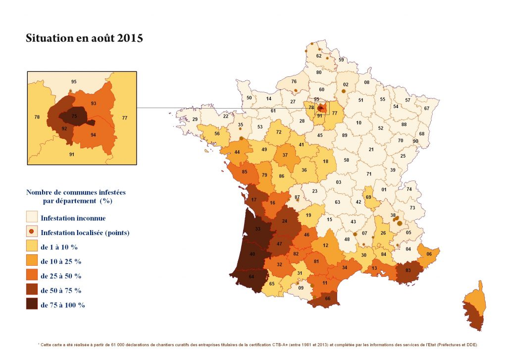 Les termites, situation en France en 2015